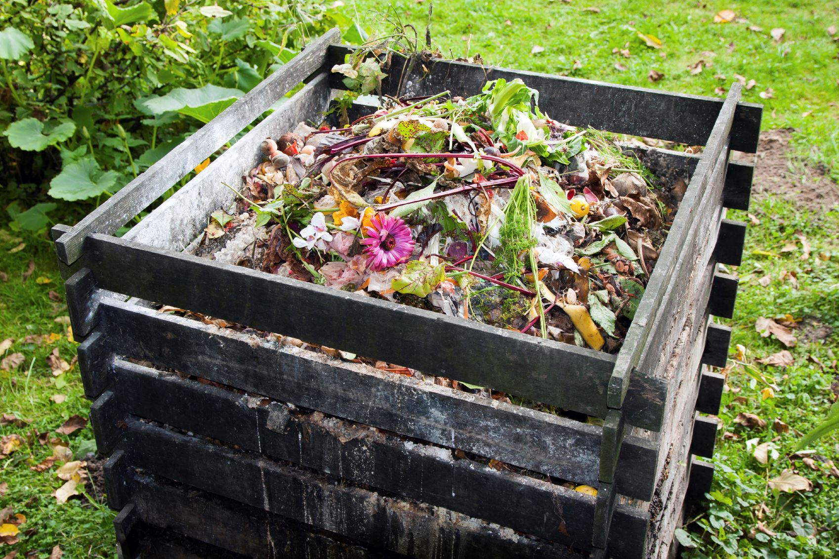 Compost Bin Made Wood