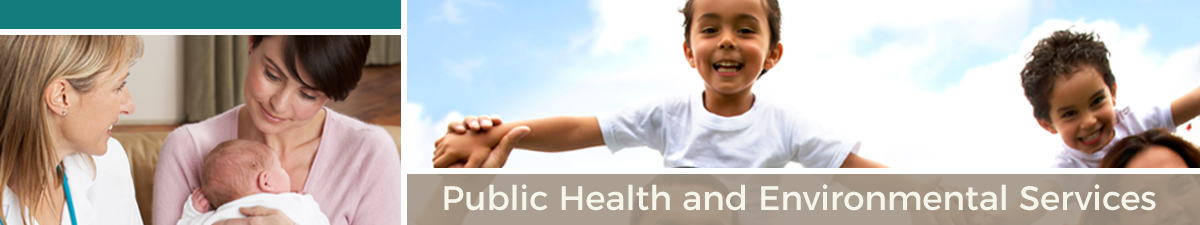 Public Health and Environmental Services